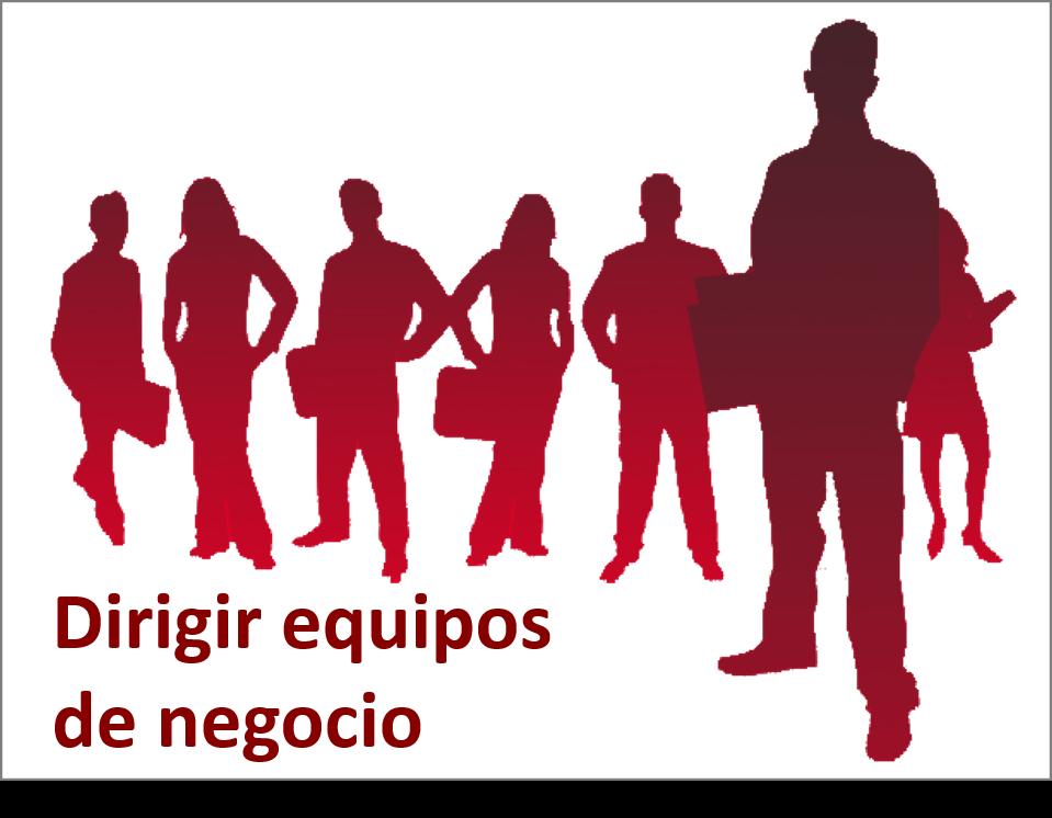 Historia Proyecto Dirigir Equipos de Negocio